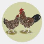 Speckled Sussex Chickens Round Sticker