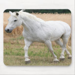Speckled White Horse Mousepads