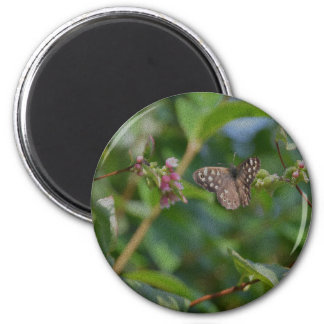 Speckled Wood Butterfly 6 Cm Round Magnet