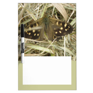 Speckled Wood Butterfly Memo Board