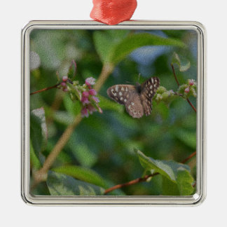 Speckled Wood Butterfly Silver-Colored Square Decoration