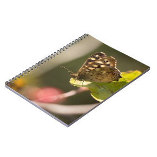 Speckled Wood Butterfly Spiral Notebook