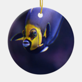 spectacled angelfish christmas tree ornament