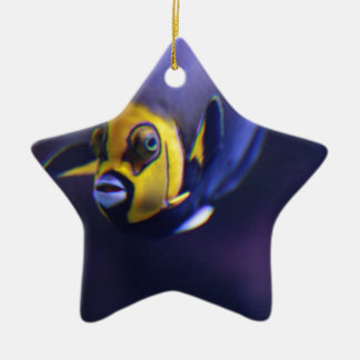 spectacled angelfish christmas tree ornaments