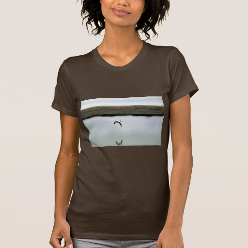 Spectacled Eiders Tee Shirts