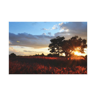 Spectacular African Sunset Canvas Print