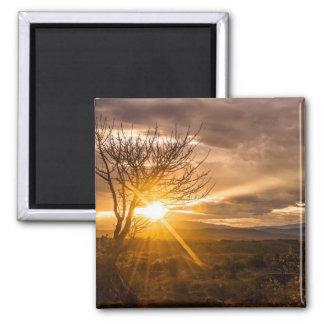 Spectacular Desert Sunrise Square Magnet
