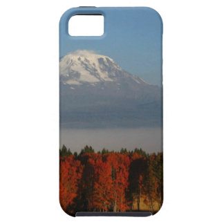 SPECTACULAR FALL COLOR SCENICS iPhone 5 CASE