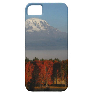 SPECTACULAR FALL COLOR SCENICS CASE FOR THE iPhone 5