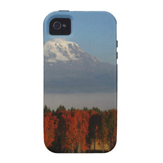 SPECTACULAR FALL COLOR SCENICS iPhone 4/4S COVERS