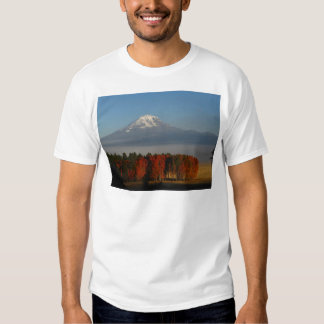 SPECTACULAR FALL COLOR SCENICS TEE SHIRTS