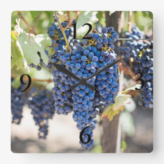spectacular purple grapes square wall clock
