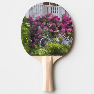 Spectacular spring bloom, whimsical antique ping pong paddle