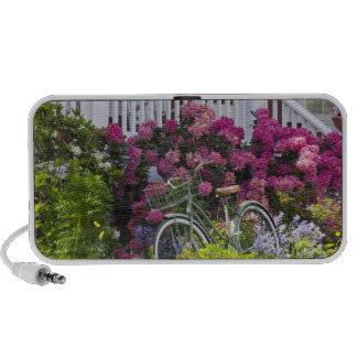 Spectacular spring bloom, whimsical antique iPod speaker