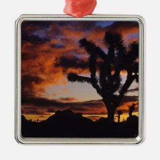 Spectacular Sunrise at Joshua Tree National Christmas Ornament