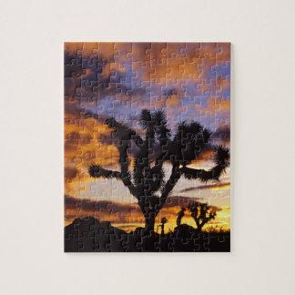 Spectacular Sunrise at Joshua Tree National Park Jigsaw Puzzle