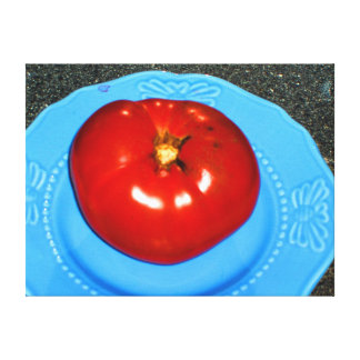 SPECTACULAR TOMATO ON A BLUE DISH CANVAS PRINT