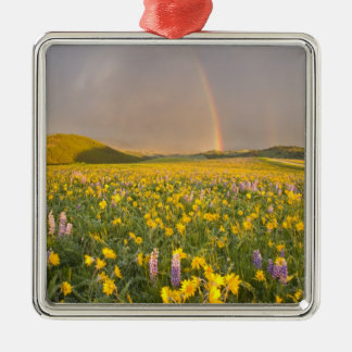 Spectacular wildflower meadow at sunrise in 2 christmas ornament