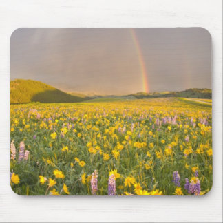 Spectacular wildflower meadow at sunrise in 2 mouse mat