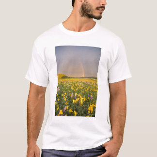 Spectacular wildflower meadow at sunrise in 2 T-Shirt