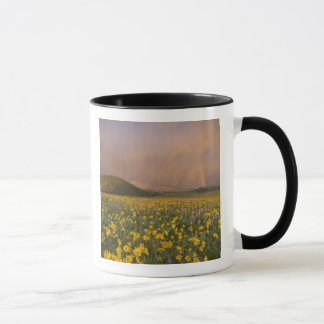 Spectacular wildflower meadow at sunrise in mug