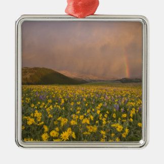 Spectacular wildflower meadow at sunrise in Silver-Colored square decoration