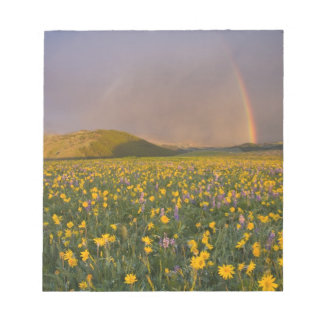 Spectacular wildflower meadow at sunrise in the 2 notepad