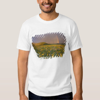 Spectacular wildflower meadow at sunrise in the 2 tee shirts