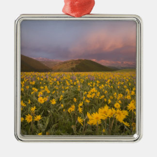 Spectacular wildflower meadow at sunrise in the Silver-Colored square decoration
