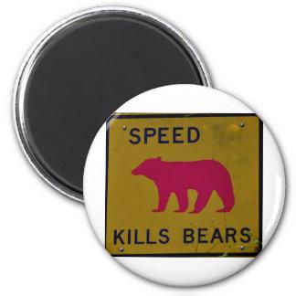 speed kills bear 6 cm round magnet