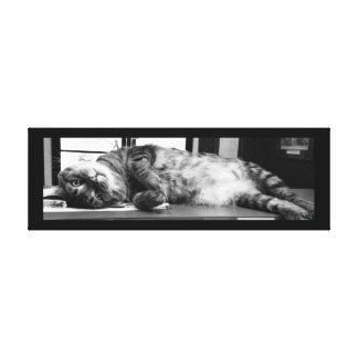 "Spencer Cat 36"" x 12"" Canvas Print"