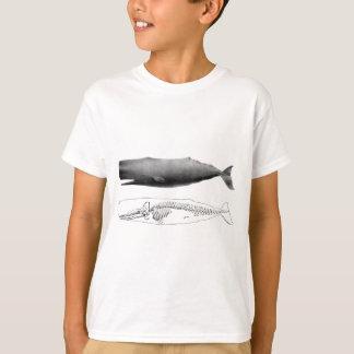 sperm-whale-1 T-Shirt