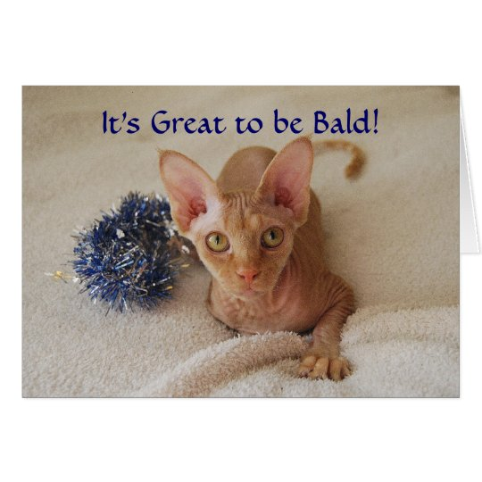 Sphinx Cat Hairless Chemotherapy Humour Card