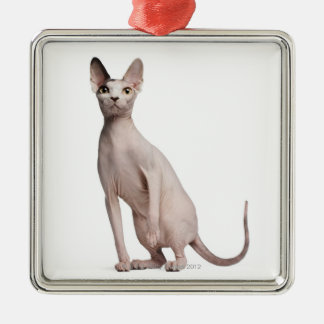 Sphynx (13 months old) christmas ornament