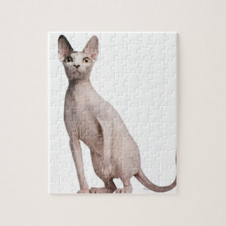 Sphynx (13 months old) jigsaw puzzle