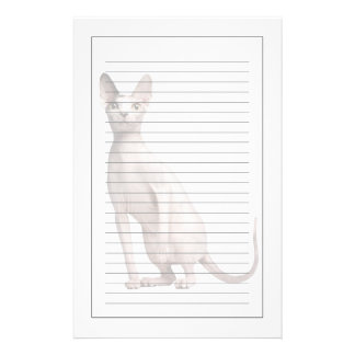 Sphynx (13 months old) personalized stationery
