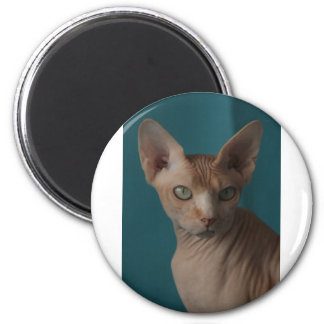 Sphynx Article 6 Cm Round Magnet