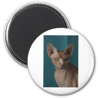 Sphynx Article Refrigerator Magnet