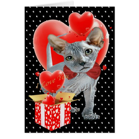 Sphynx  Box of Hearts Valentine Cards