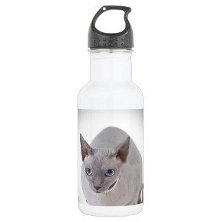 Sphynx cat 532 ml water bottle