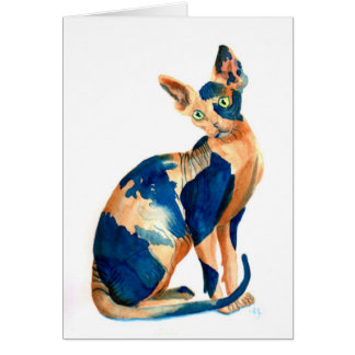Sphynx Cat 6 Note Card