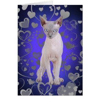 Sphynx cat card