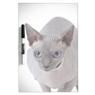 Sphynx cat dry erase whiteboard