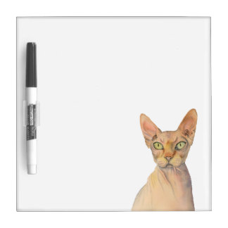 Sphynx Cat Watercolor Portrait Dry Erase Whiteboard