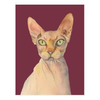 Sphynx Cat Watercolor Portrait Postcard