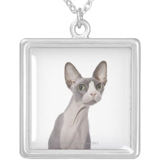 Sphynx Cat with surprised expression Silver Plated Necklace