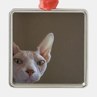 Sphynx Hairless Cat Mini Frame Ornament