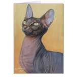 Sphynx Sphinx Cat Cats Electra Cards