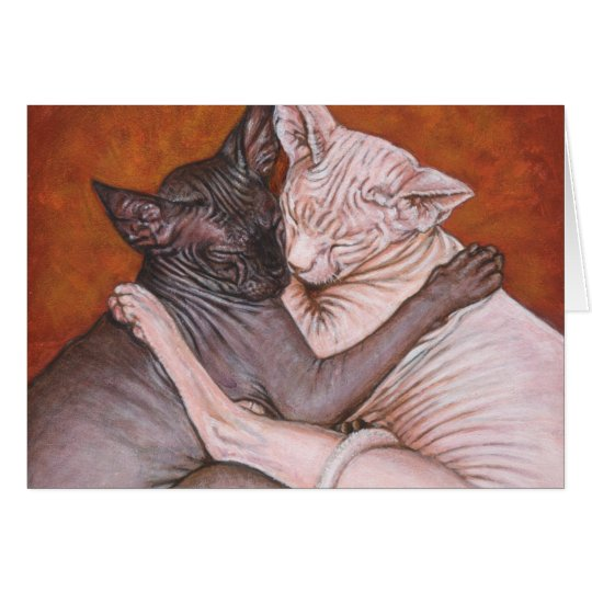 Sphynx Sphinx Cat Cats Nap Time Greeting Card