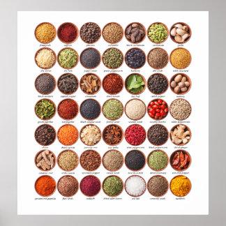 Spice Chart Poster - SRF